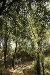 Israel, Pa'ar Cve in the Upper Galilee