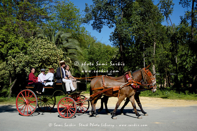 A barouche carriage in Maria Luisa Park during the Seville Spring Fair, Seville, Andalusia, Spain.