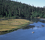 People canoeing in Big River esturay near Mendocino California