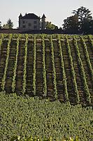 Europe/Europe/France/Midi-Pyrénées/46/Lot/Floressas: Château de Chambert et son vignoble AOC Cahors [Non destiné à un usage publicitaire - Not intended for an advertising use]