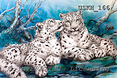 Kayomi, REALISTIC ANIMALS, paintings, snow leopard, WhisperSnowLeopards_M, USKH166,#A# realistische Tiere, realista, illustrations, pinturas