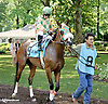 Brown Rice before The Christiana Stakes at Delaware Park on 7/9/14