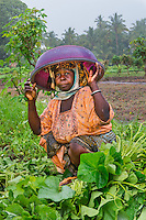 AWright_Tanz_010229.jpg<br />