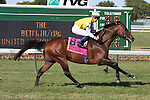 07 03 2010: ChinChon (IRE) with Garrett Gomez up wins the Grade I United Nation Stakes, at 1 3/8 mile on the turf, at Monmouth Park, Oceanport, NJ.  Trainer Carlos Laffon-Parias.  Owner Darpat S.L. Stables.