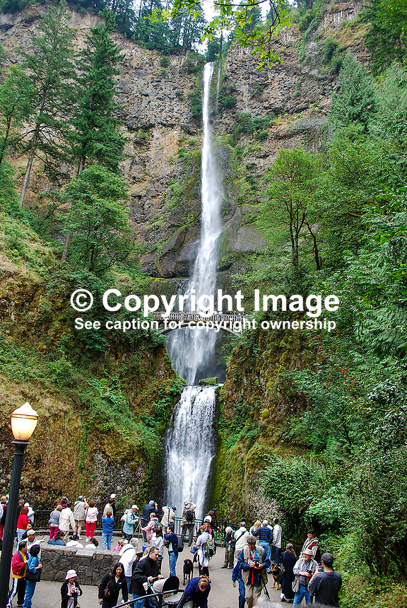 Multnomah Falls, Columbia River Gorge, Oregon, USA, 200809010807..IMPORTANT: Please go to www.victorpatterson.com and click on my Terms and Conditions of use.