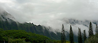 Misty Koolau Mts at the Pali Hwy