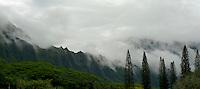 Misty Koolau Mts at the Pali Hwy