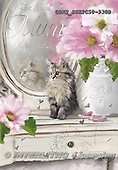 John, FLOWERS, BLUMEN, FLORES, paintings+++++,GBHSSSE2C50-930B,#f# ,everyday