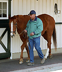 GENUINE RISK, at age 28, Newstead Farm, Upperville, VA, March 2005, with farm manager Buck Moore.