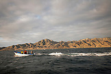 MEXICO, Baja, Magdalena Bay, Pacific Ocean, group heading out to go grey whale watching in the bay