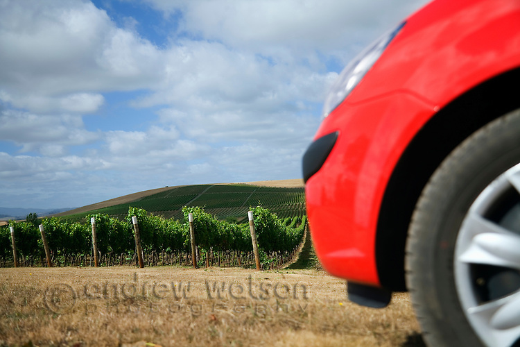 Driving through the vineyards of the Pipers River wine region.  Pipers River, Tasmania, AUSTRALIA