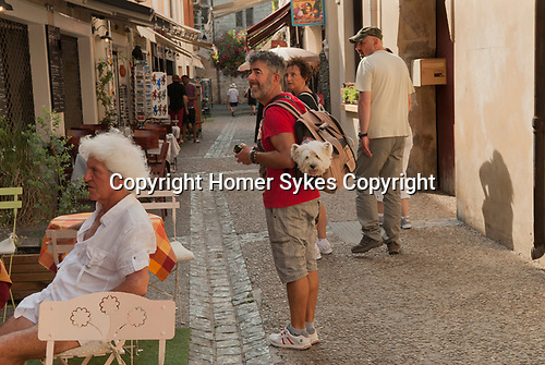 Dog being carried in a shoulder bag, France, couple on a family holiday. 2016