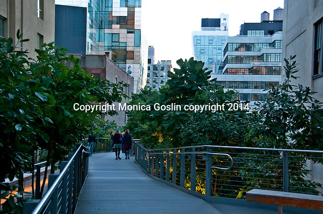 The Highline (public park on an old elevated train line) in New York City at sunset