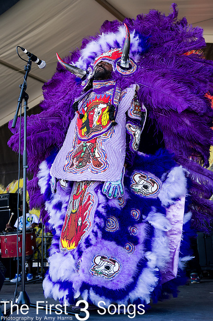 The Young Seminole Hunters Mardi Gras Indians perform during the New Orleans Jazz & Heritage Festival in New Orleans, LA.