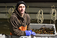 Matt Parker, 19, works sorting live lobsters by size and weight at Island Seafood's receiving facility in Eliot, Maine, USA, on Wed., Jan. 31, 2018. Lobsters are sorted into similar sizes and then moved to a packing facility to be shipped to customers around the world.