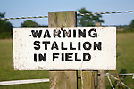Sign Warning stallion in field close-up UK