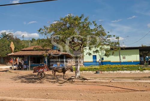 Pará State, Brazil. São Félix do Xingu. Horse cart parking at the bus station.