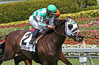 HALLANDALE BEACH, FL - APRIL 01:  #2 Summersault (NY) wth jockey Paco Lopez on board, wins the Orchid Stakes (Grade III) at Gulfstream Park on April 01, 2017 in Hallandale Beach, Florida. (Photo by Liz Lamont/Eclipse Sportswire/Getty Images)