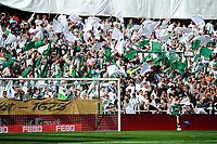 GRONINGEN - Voetbal, FC Groningen - FC Utrecht,  Eredivisie , Noordlease stadion, seizoen 2017-2018, 27-08-2017,   feest bij de supporters met veel vlaggetjes