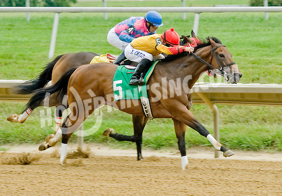 Leonides winning at Delaware Park on 8/1/12