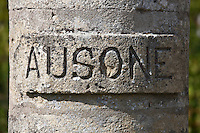 Chateau Ausone vineyard  in St Emilion in Bordeaux wine region of France