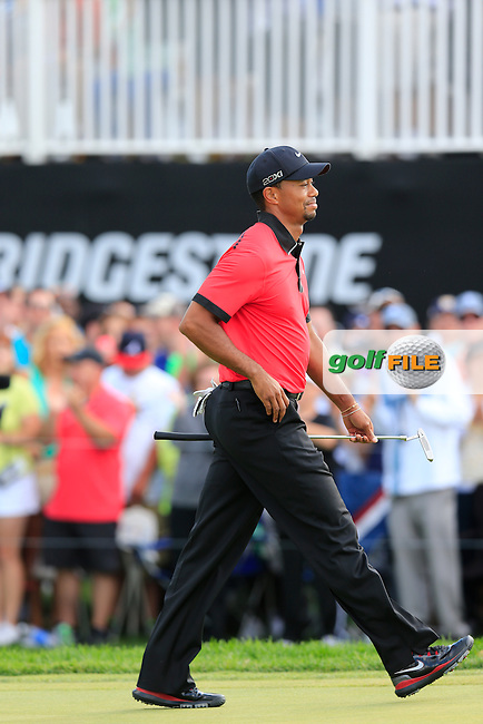 Tiger Woods (USA) walks onto the 18th green during Sunday's Final Round of the 2013 Bridgestone Invitational WGC tournament held at the Firestone Country Club, Akron, Ohio. 4th August 2013.<br /> Picture: Eoin Clarke www.golffile.ie