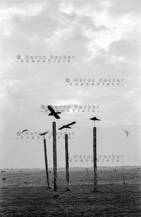 Berlino, aeroporto di Tempelhof riqualificato a parco pubblico. Dei pali con le figure di uccelli  --- Berlin, Tempelhof airport requalified to public park. Poles with figures of birds