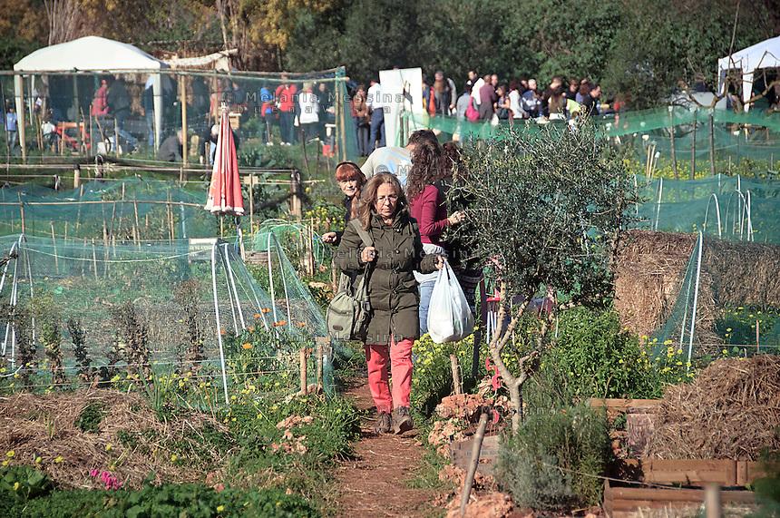 market garden in Palermo within community gardening.<br /> Ecomercato all'interno dell'orto urbano condiviso con prodotti biologici.