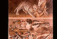Roman Art:  Mosaic--Gatta che uccide und pernice--Volatili e pesci.  National Museum, Naples.