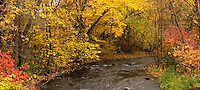 Minnehaha Creek surrounded by autumn colors.