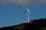 Windmill on Brooklyn Hill. Wellington scenes. Photo: Marc Weakley
