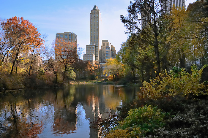 A Beautiful Fall Day at the Duck Pond in Central Park