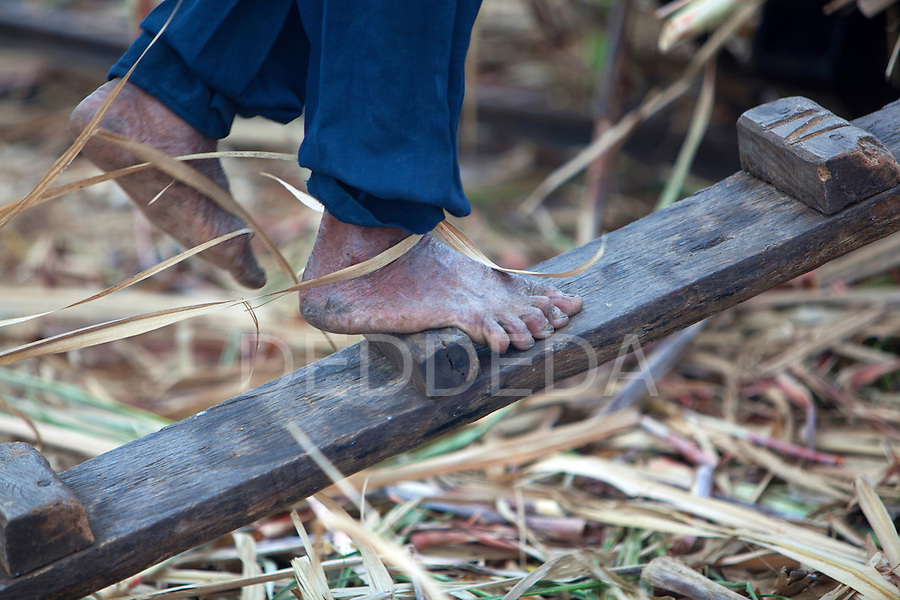 A field worker harvests sugar cane in bare feet, in a field near Bias City on Negros Oriental, Philippines.