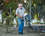 Ray Zeeb volunteer for H.A.R.P. (Homeless Animal Response Program) carries an empty trap back to his truck in Antioch, California on Saturday, March 22, 2014.  Photo/Victoria Sheridan