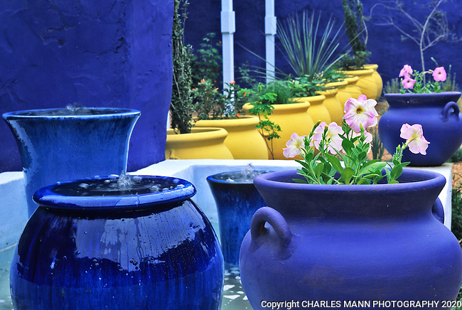 In his San Antonio  demo garden at the Antique Rose Emporium, Mike Shoup used containers colored pale yellow, dark blue and light  blue echo the colors of the walls and arbor, mimicking  the scheme of the Moroccan garden Majorelle.