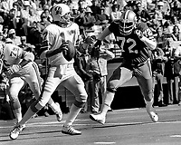 Tampa Bay QB Jeb Blount is rushed by S.F.49er Cleveland Elam. (1977 photo/Ron Riesterer)