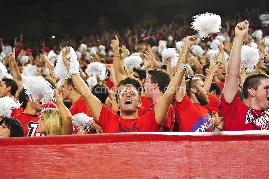 Sept 18, 2010; Tucson, AZ, USA; Arizona Wildcats fans react to their team's defensive stop late in the 4th quarter of a game against the Iowa Hawkeyes at Arizona Stadium. Arizona won the game 34-27.