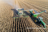 63801-13006 Harvesting corn and unloading into grain cart in fall-aerial  Marion Co. IL
