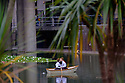 London, UK. 17.07.2016. Ragnar Kjartansson's SECOND MOVEMENT, Barbican Lakeside.  To coincide with the exhibition in the Art Gallery, Kjartansson has conceived a new work of a mirrored scene of movement and symmetry, entitled SECOND MOVEMENT (2016), for the Barbican Lakeside every Saturday and Sunday. In a theatrical reality, two women in quintessential Edwardian costume row their boat on the Barbican Lakeside embracing in a never-ending kiss. Picture shows: Carly Halse &  Emmanuela Rahil Lia. Photograph © Jane Hobson.
