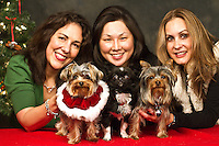 Joey and his owner Debbie Ingram (left), Kato and his owner Jenny Kim, and Carlos and his owner Maria Powers (right) are photographed at a Muttmixer holiday party thrown by City Dog magazine in Seattle, WA on December 09, 2010. (photo by Karen Ducey)