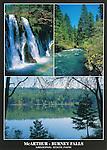 FB 339  McArthur-Burney Falls Memorial State Park, 5x7 postcard