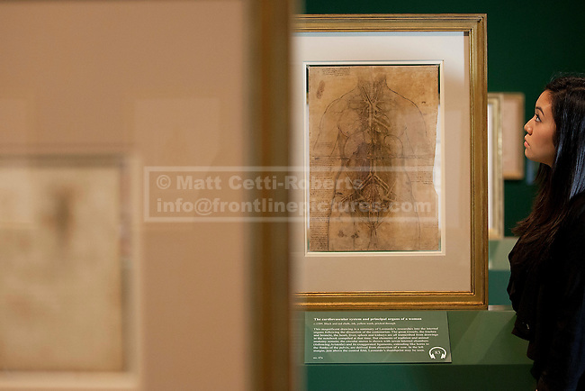 30/04/2012. LONDON, UK. A member of the gallery staff from The Queen's Gallery, looks at Leonardo da Vinci's 'The cardiovascular system and principle organs of a woman'.  A sketched in c.1509 it also contains what is suspected to be one of the artist's fingerprints. Featuring 87 pages of sketches from the artist's notebooks the exhibition, entitled 'Leonardo da Vinci: Anatomist', is the largest ever of his anatomical work and opens at The Queen's Gallery in London on Friday the 4th of May. Photo credit: Matt Cetti-Roberts