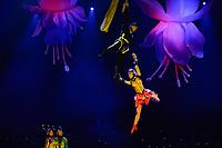 """SÃO PAULO, SP, 05.04.2017 - CIRCO-CHINA -  O Circo da China apresenta para a imprensa o seu novo espetáculo """"A Jornada do Panda Sonhador"""", na noite desta quarta-feira, 05, no Citibank Hall em São Paulo. (Foto: Levi Bianco\Brazil Photo Press)"""