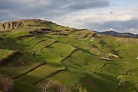 ROMANIA / Maramures / Bocioel / 17.04.2008 ..A view of the fields above the village of Bocioel in springtime. ..© Davin Ellicson / Anzenberger