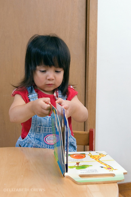 Berkeley CA Girl, Guatemalan, two-years-old showing ability to turn pages in book  MR