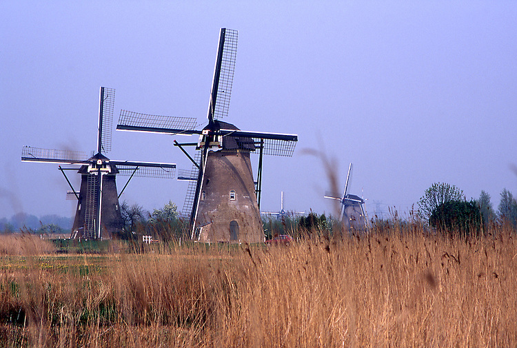 Europe, NLD, Netherlands, Provinz Zuid-Holland, Kinderdijk, Typical Windmills....[ For each utilisation of my images my General Terms and Conditions are mandatory. Usage only against use message and proof. Download of my General Terms and Conditions under http://www.image-box.com or ask for sending. A clearance before usage is necessary...Material is subject to royalties. Each utilisation of my images is subject to a fee in accordance to the present valid MFM-List...Contact | archive@image-box.com | www.image-box.com ]