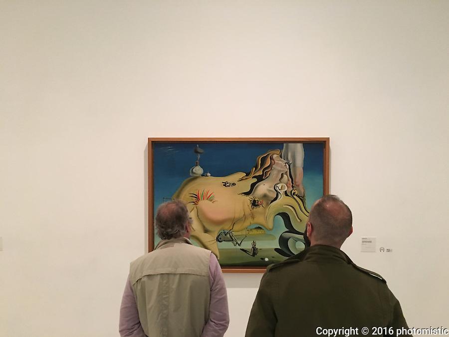 "Dali's ""Face of the Great Masturbator"" @ Museo Riena Sofia"