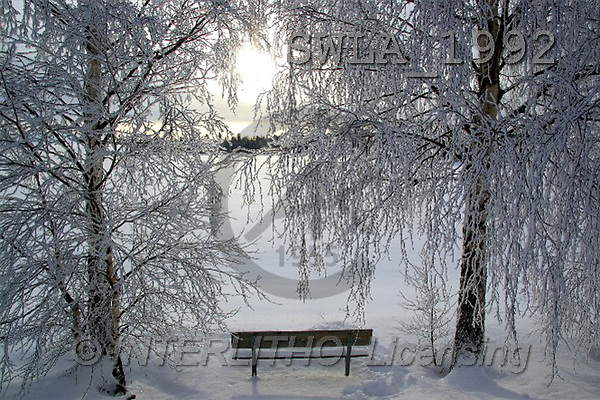 Carl, CHRISTMAS LANDSCAPE, photos(SWLA1992,#XL#) Landschaften, Weihnachten, paisajes, Navidad