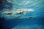 2009 M DI Water Polo