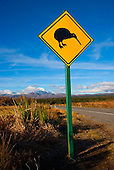 Kiwi caution sign on State Highway 47 near Tongariro National Park. Mounts Tongariro & Ngauruhoe are in the distance, Central North Island, New Zealand